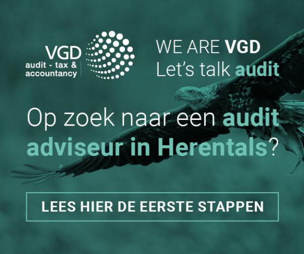 VGD audit feb