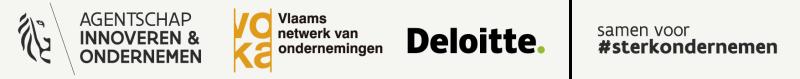 Vlaio Deloitte 2020-2024