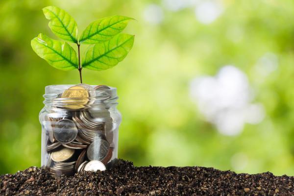 Money talks: Invest smart, be a mentor.
