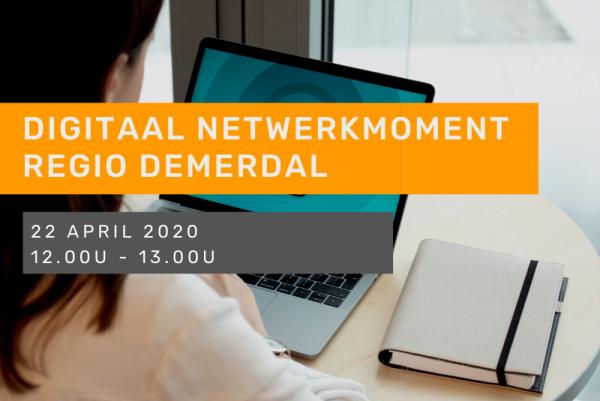 Digitaal Netwerkmoment Regio Demerdal