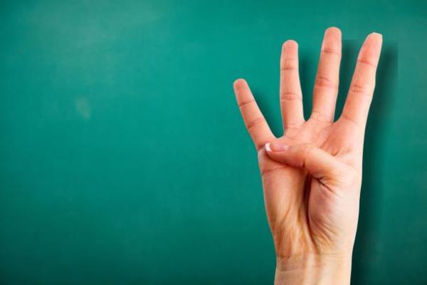 vier vingers
