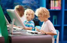 lerend netwerk jong geleerd oud gedaan