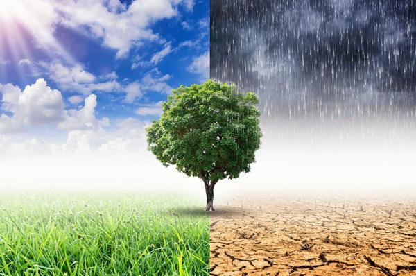 Klimaatopwarming bedrijven