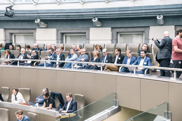 CEO's in het Vlaams Parlement
