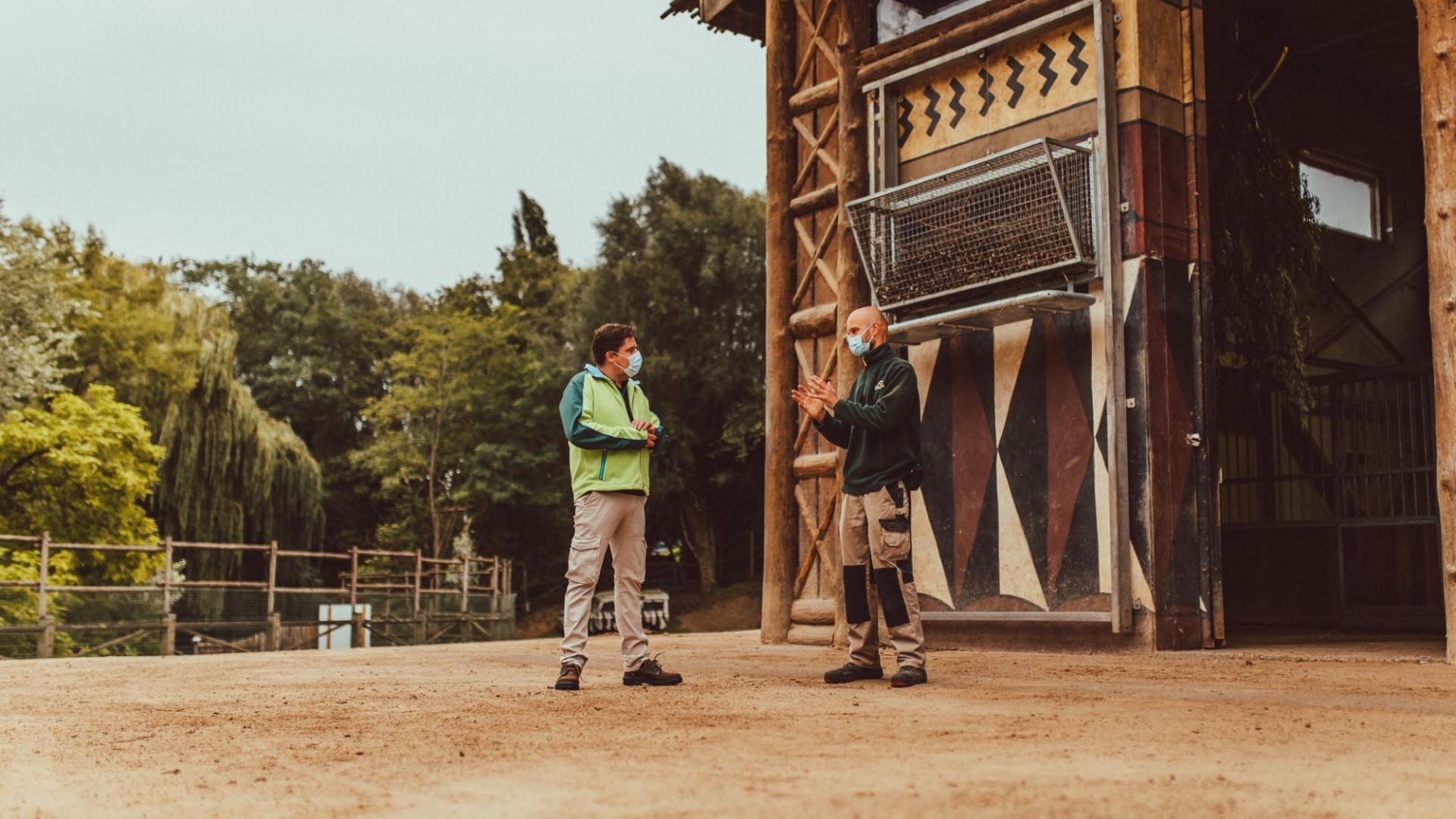 Jeremie Vaneeckhout bij Giraffen