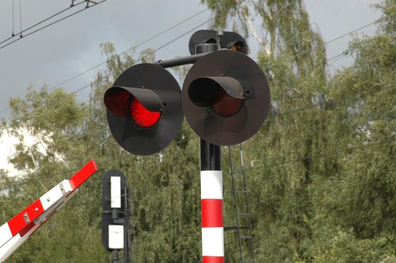 Ijzeren Rijn: opportuniteit voor treinvervoer