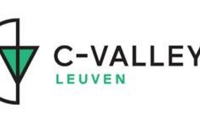 Logo C-Valley