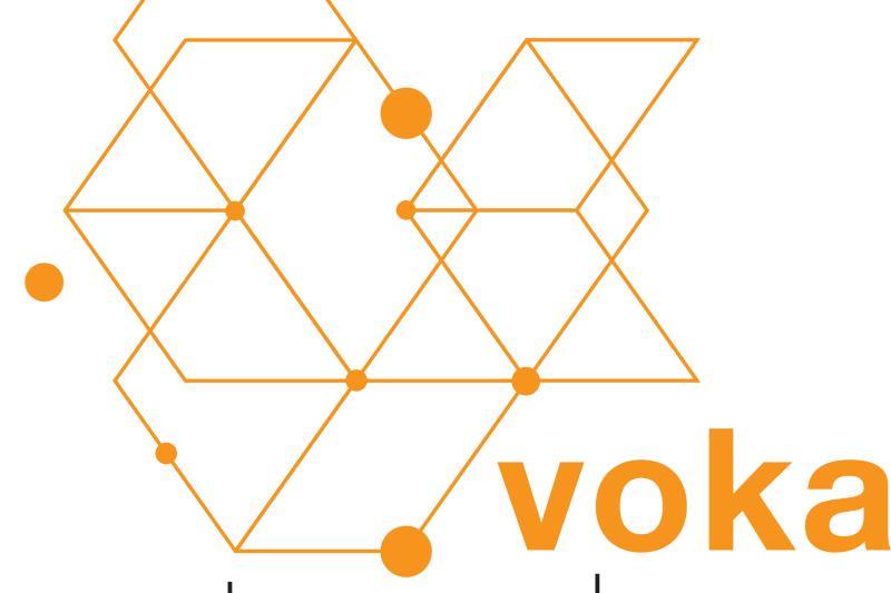Netwerken Voka