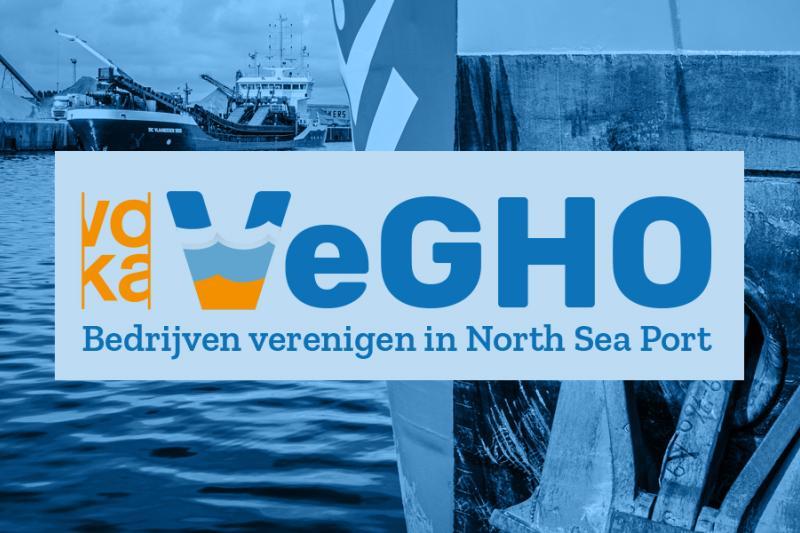 Header Vegho