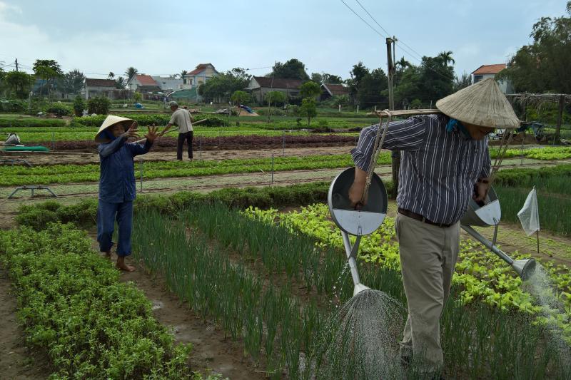 EU-Vietnam vrijhandelsverdrag