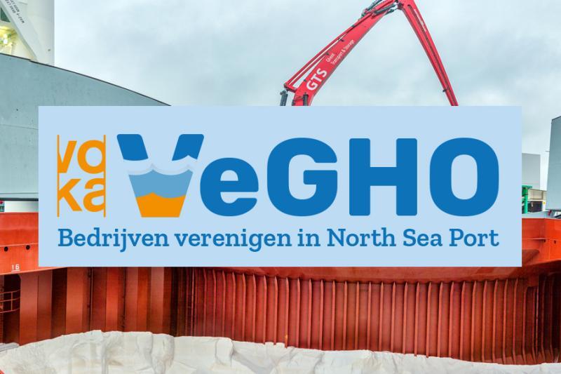 vegho logo image