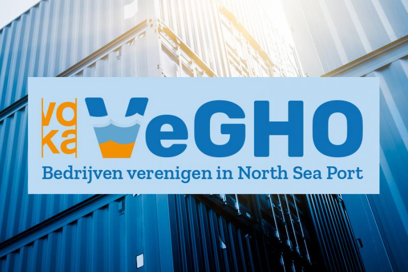 Vegho logo