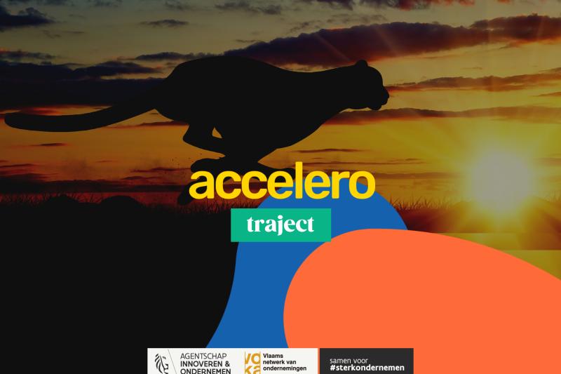 Accelero (tussen 30 en 150 medewerkers)