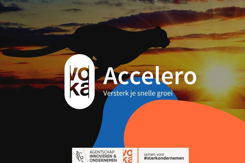 Accelero (tussen 10 en 30 medewerkers)