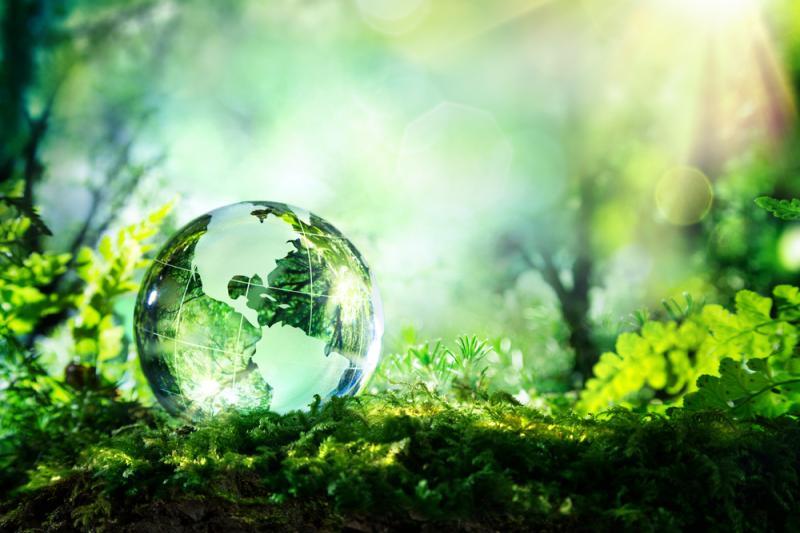 Milieuforum