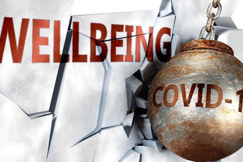 Leertraject Voka HC 'Welzijn en gezondheid op het werk in een coronacontext'