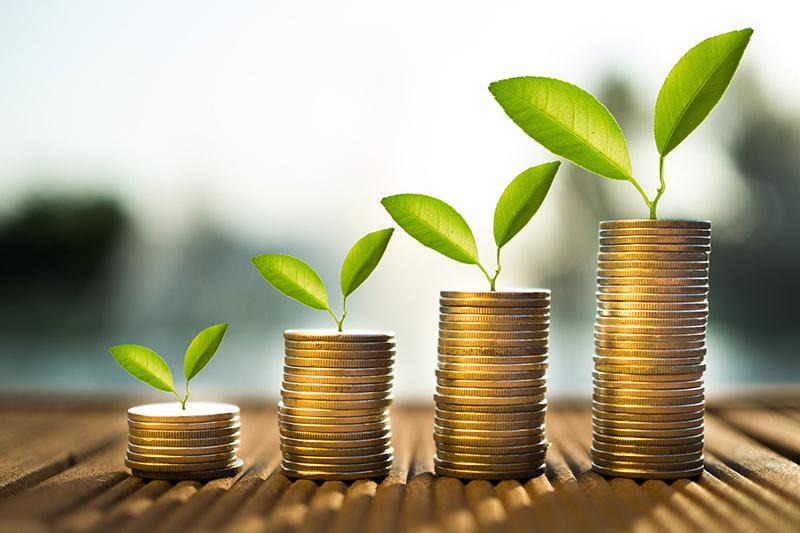 Groeifinanciering