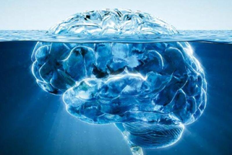 braindrain