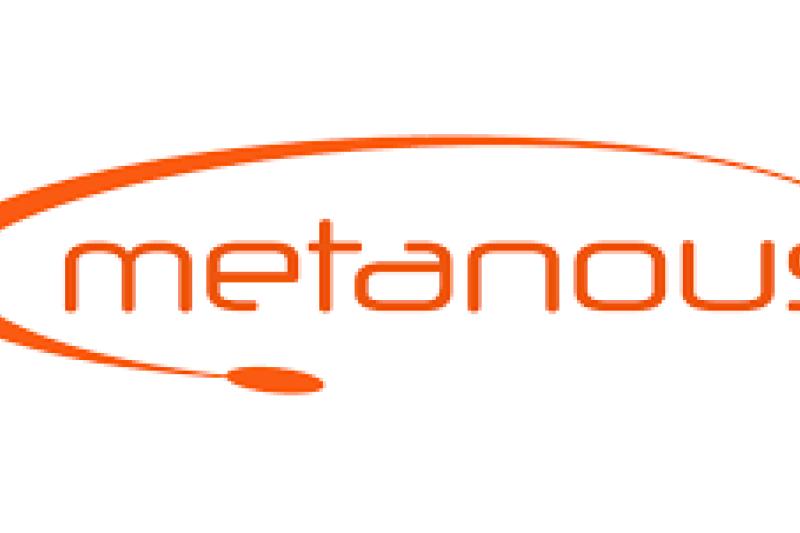 Metanous